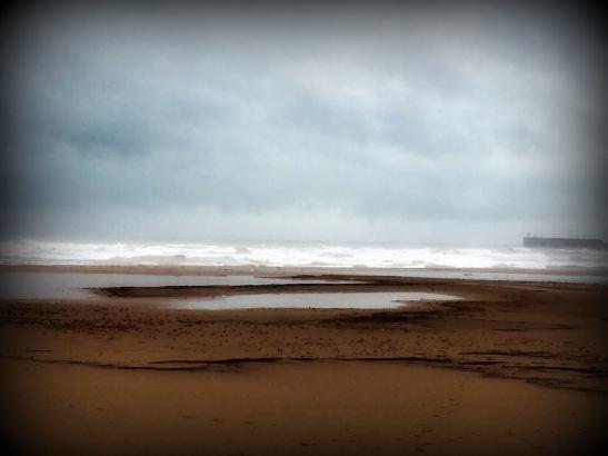 mar-valencia-20-01-2017-pura